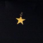 Une étoile en or jaune.