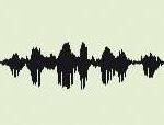 Les ondes vocales des mariés